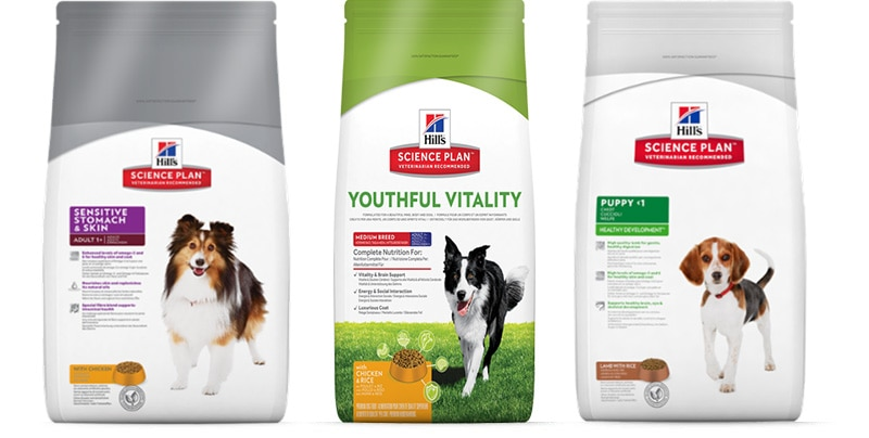 Science Plan products for dog